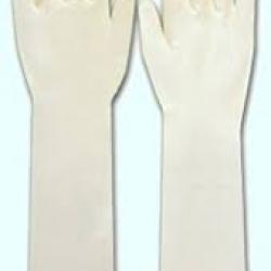 Găng tay sản dài, đã tiệt trùng