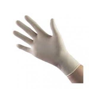 Găng tay Vinyl , trắng đục không bột